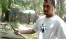 Honduras: Detienen y mandan a proceso a dirigente campesino del MUCA