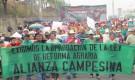 Honduras: Movilización por aprobación de la Ley de Reforma Agraria