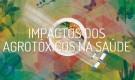 Fernando Carneiro sobre dossiê Abrasco: o grito contra o silêncio opressivo do agronegócio